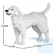 Jekca - 拉布拉多犬 01S(五種顏色)
