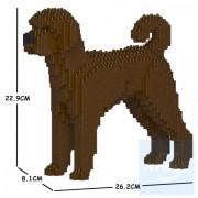 Jekca - 拉布拉多貴賓犬 01S(三種顏色)