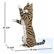 Jekca - 虎斑貓 14S (四種顏色)