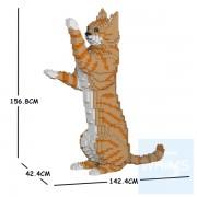 Jekca - 虎斑貓 14H-M01