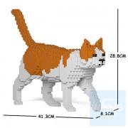 Jekca - 橙白家貓 11S-M03