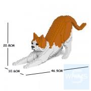 Jekca - 橙白家貓 13S-M03