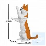 Jekca - 橙白家貓 22S-M01