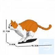 Jekca - 橙白家貓 23S-M01