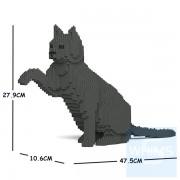 Jekca - 家貓 08S (白貓,黑貓,灰貓)