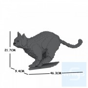 Jekca - 家貓 19S (白貓,黑貓,灰貓)