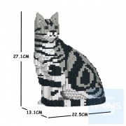Jekca - 美國短毛貓 01S-M01