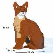 Jekca - 阿比西尼亞貓 02S