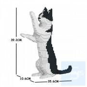 Jekca -黑白貓 17S-M01