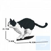 Jekca -黑白貓 21S-M01