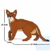 Jekca - 阿比西尼亞貓 01S