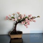 花之物語 - 櫻花 (Sakura)