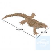 Jekca - 鬃獅蜥 01C