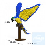 Jekca - 藍黃金剛鸚鵡 02S