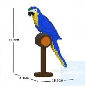 Jekca - 藍黃金剛鸚鵡 01S