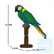 Jekca - 黃領金剛鸚鵡 01S
