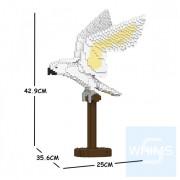 Jekca - 大白鳳頭鸚鵡 02S