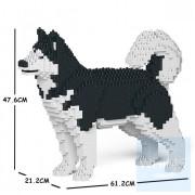Jekca - 阿拉斯加雪橇犬 01C M01/M02/M03