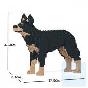 Jekca - 澳洲卡爾比犬 01S