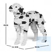 Jekca - 斑點狗 01C M01/M02