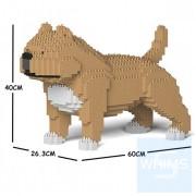 Jekca - 美國惡霸犬 01C M01/M02/M03