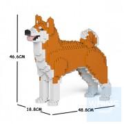 Jekca - 秋田犬 01C M01/M02